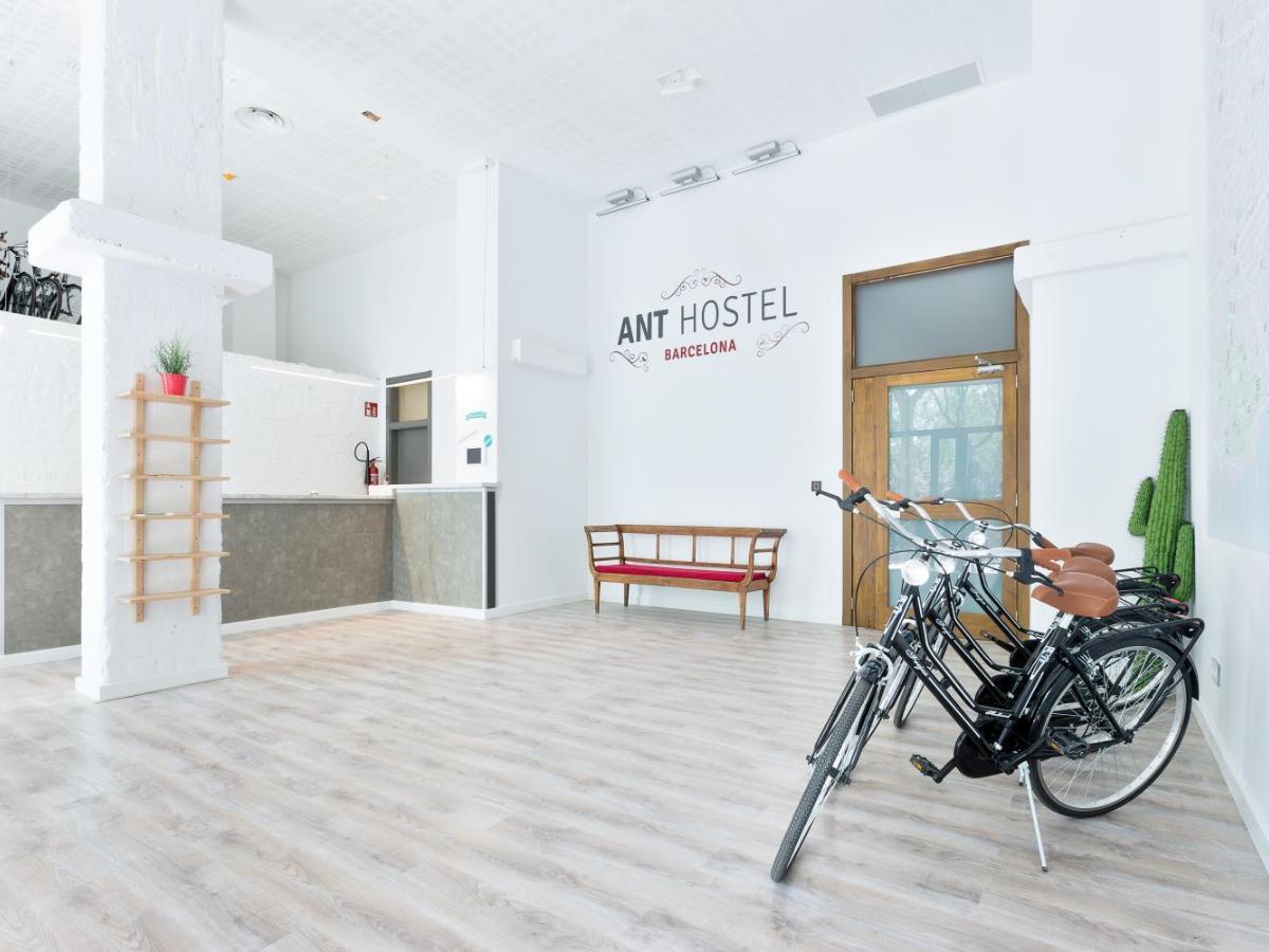 2437 Vrais Commentaires Sur Ant Hostel Barcelona Booking Com