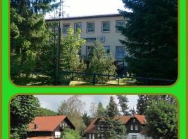Harz Resort Waldesruh