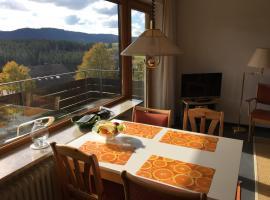 Panoramablick zum Feldberg