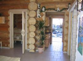 Apart Alba, pet-friendly hotel in Ischgl