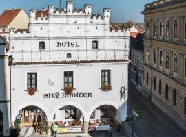 Hotel Bílý Koníček