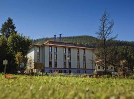 Balneario Areatza, hotel near Gorbea Mountain, Areatza