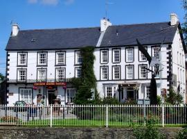Neuadd Arms Hotel, hotel in Llanwrtyd Wells