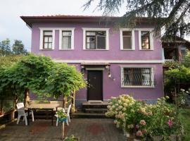 Villa Banizo Great Black Sea View Village House