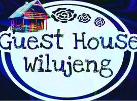 Wilujeng Guest House