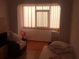 Apartament Mircea