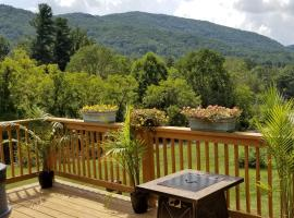 East Asheville Hot Tub, Views, Fire Pit, Parkway