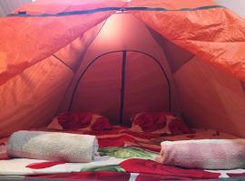 Tents In Hostel Lucky Fox