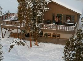 Breckenridge Ski Chalet, pet-friendly hotel in Breckenridge