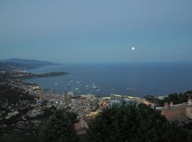 Amazing view of Monte Carlo & sea