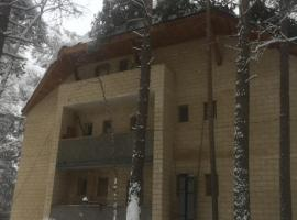 Apart Hotel Snezhinka