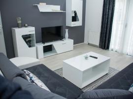 Apartment ALEKSANDAR Valjevo