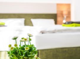 Hotel-Pension Treppengasse Nr 5 bis 6, economy hotel in Altenburg