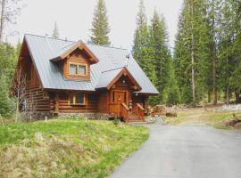 Baldy Bear Cabin, pet-friendly hotel in Breckenridge