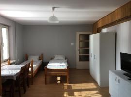 Noclegi Tulipan, pet-friendly hotel in Konin