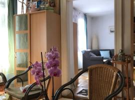 Vadmacska Apartmann