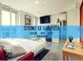 STUDIO LE GARFIELD - LE FORMEL