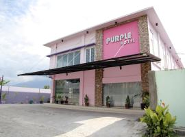 OYO 1138 Purple Hotel