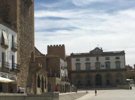 Apartamentos Turísticos Domus Seleqtia Plaza Mayor