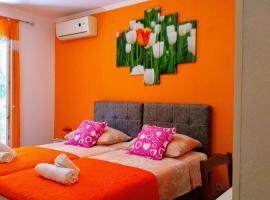 Apartments Desa Petric