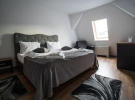 Hotel Darina Tarnaveni