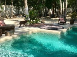 Tropical Paradise, hotel que admite mascotas en Tulum