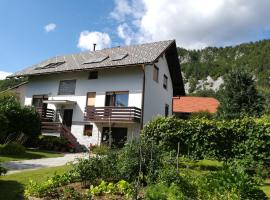 Apartment Ajdna / Whole flat in a house close to Bled