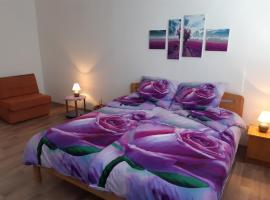 Apartmán Olmik