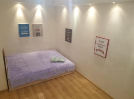 Apartment for Family and Friends in the Center of Novosibirsk, apartment in Novosibirsk