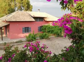 Efcaliptos cottage