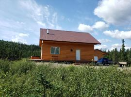 Denali Wild Stay - Bear Cabin with Hot Tub and Free Wifi