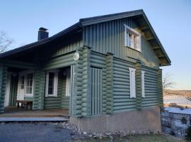 Areenanmäki cottage, hotel in Jämsä