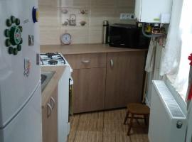 Apartament Ionut
