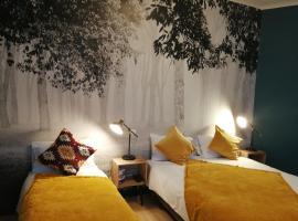 Hotel Du Cygne Tours