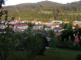 Apartmán Velké Karlovice