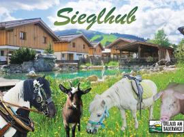 Hotel Sieglhub, hotelli kohteessa Flachau