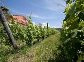 Agriturismo La Burlanda