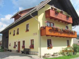 Apartments and Rooms Hodnik Slavko