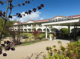 Fletcher Strandhotel Renesse, pet-friendly hotel in Renesse