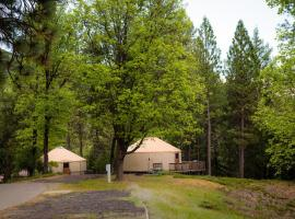Yosemite Lakes Hillside Yurt 12