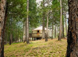 Yosemite Lakes Hillside Yurt 14