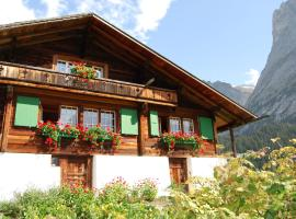 Cozy Chalet in Grindelwald with Mountain View