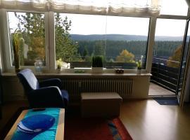 Appartement mit Südbalkon und Feldbergblick in Kappel