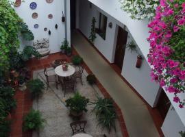 Hotel San Miguel, hotel in Córdoba
