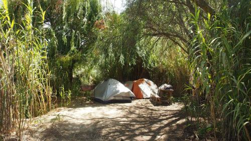 Camping Diaguitas