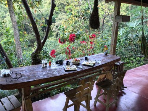 Finca San Rafael - Cafe y Cacao