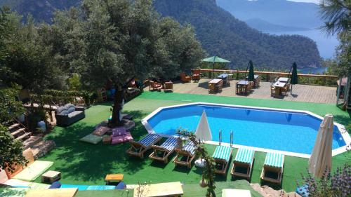 Shiva Camp