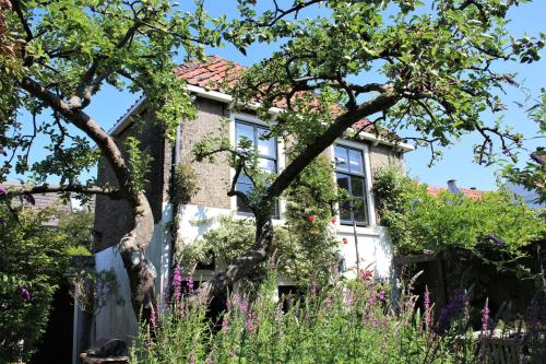 Apple Tree Cottage - charming detached canalhouse in our garden - city heart Gouda
