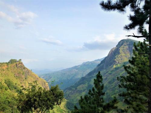 the ella valley