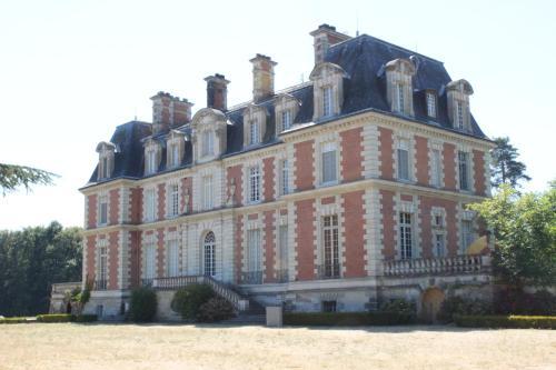 Chateau du Guérinet D'Orchaise